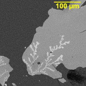Dendritic growth on a PCBA.